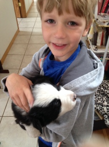 Our son with one of the puppies.
